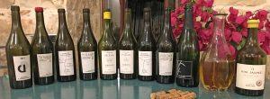 טעימת יינות מאזור ז׳ורה